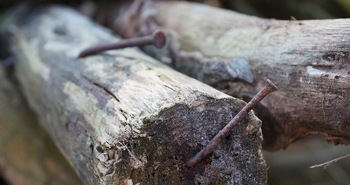 Wood with rusty nails